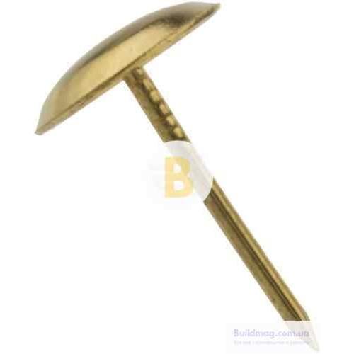 Гвозди обивочные 100шт золото